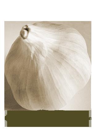 Argentine blanche