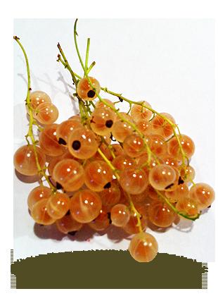 à grappes jaunes