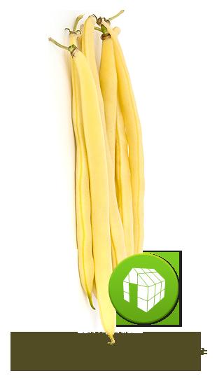 jaune de serre