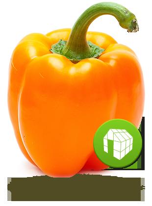 orange de serre