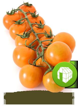 cerise orange de serre